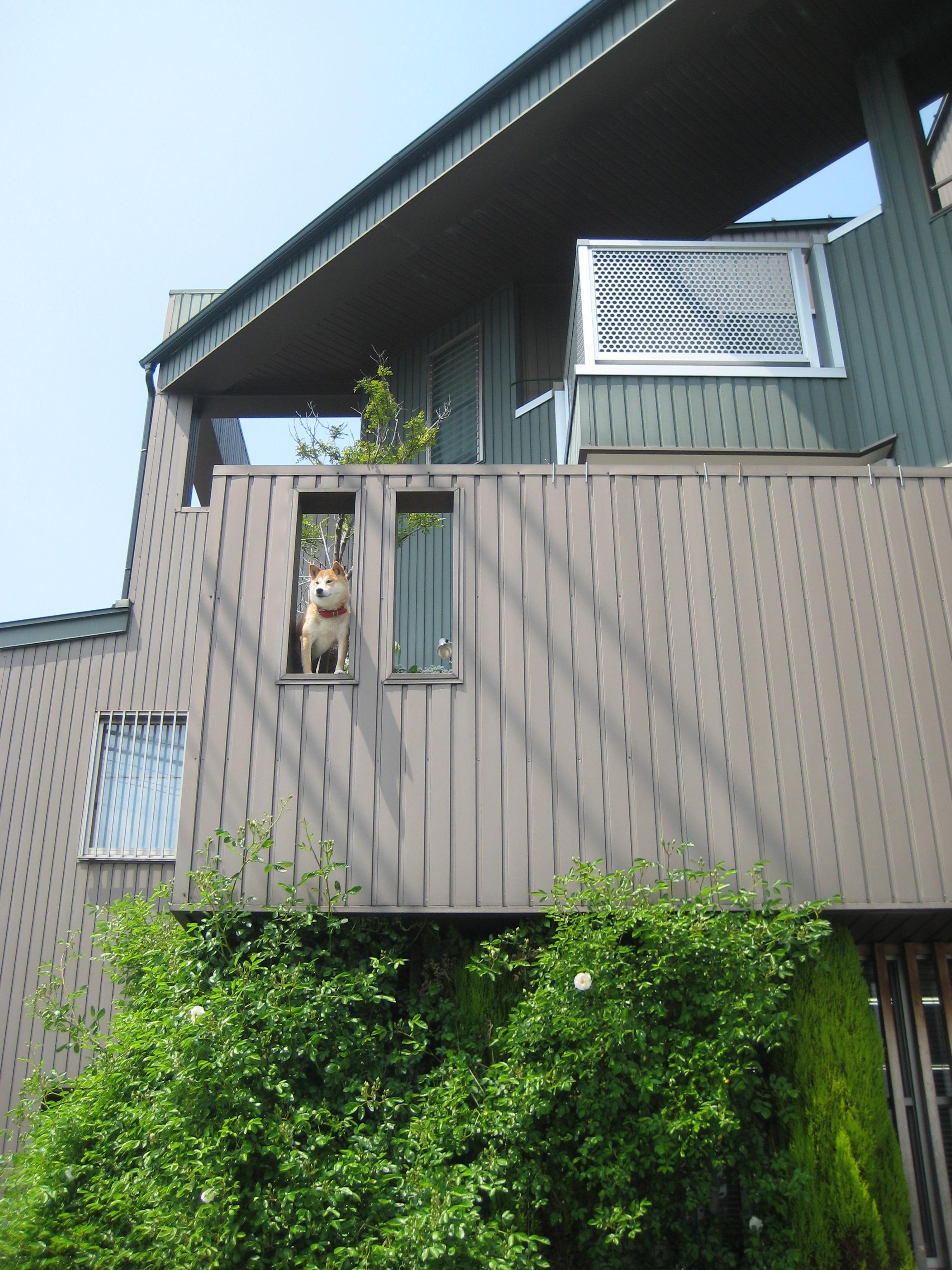 愛知県高浜市神明「Ⅳテラスの家」 お宅訪問