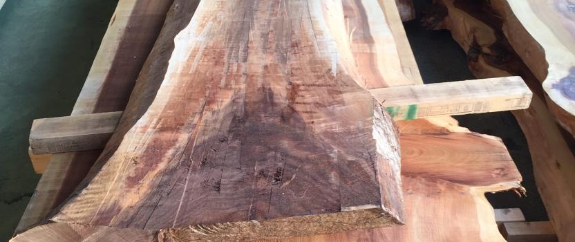 愛知県小牧市「桑原木材㈱モデルハウス」 国産材 木の家 家具製作
