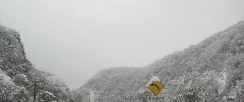 福井は雪景色
