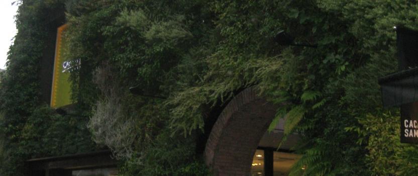 東京 建築視察1 毛深い建築