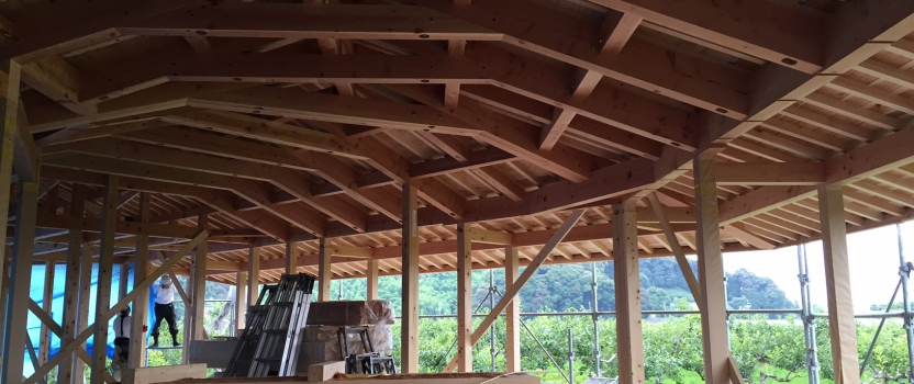 岐阜県本巣市「本巣の家」木造平屋建 上棟