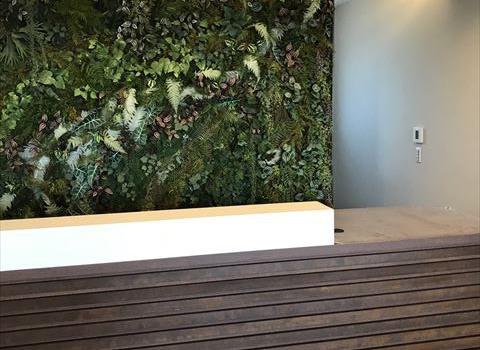 愛知県一宮市 「森整形外科クリニック」工事 壁面緑化BLOOM