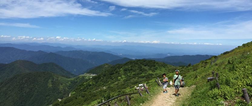 伊吹山に登りました