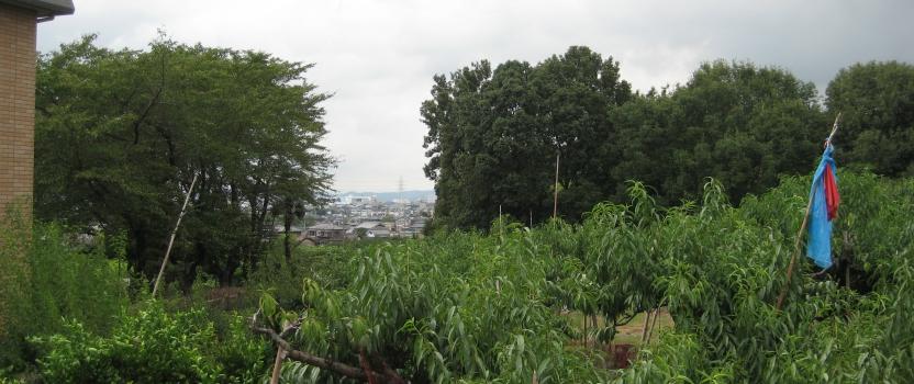 愛知県犬山市「つつじヶ丘の家」木造住宅 実施設計中