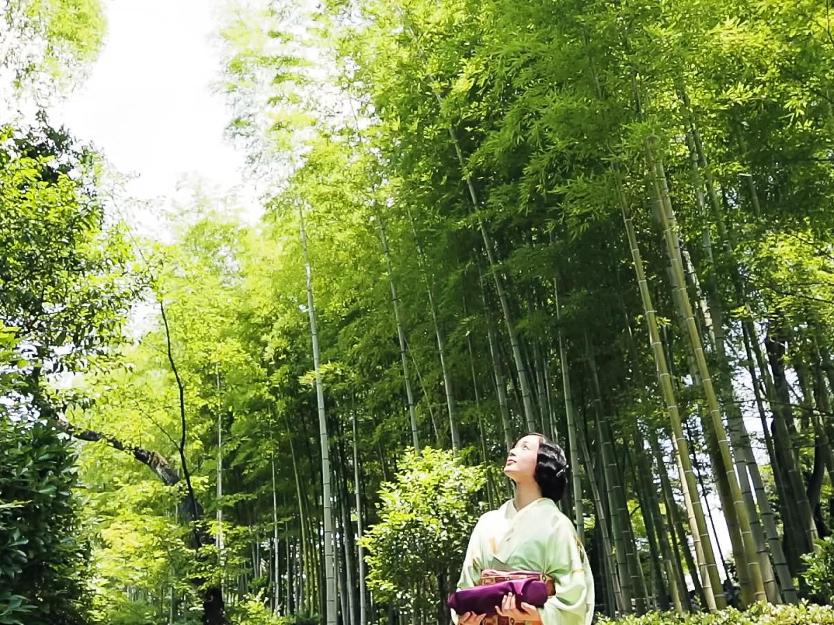 辻利兵衛本店 – 春夏秋冬 – / TUJIRIHEI-HONTEN – Four Season -